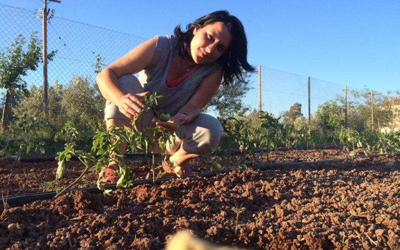 Δήμητρα Τσακίρη: Κηπευτικά, φρούτα και σαλάτες βιοδυναμικής καλλιέργειας.